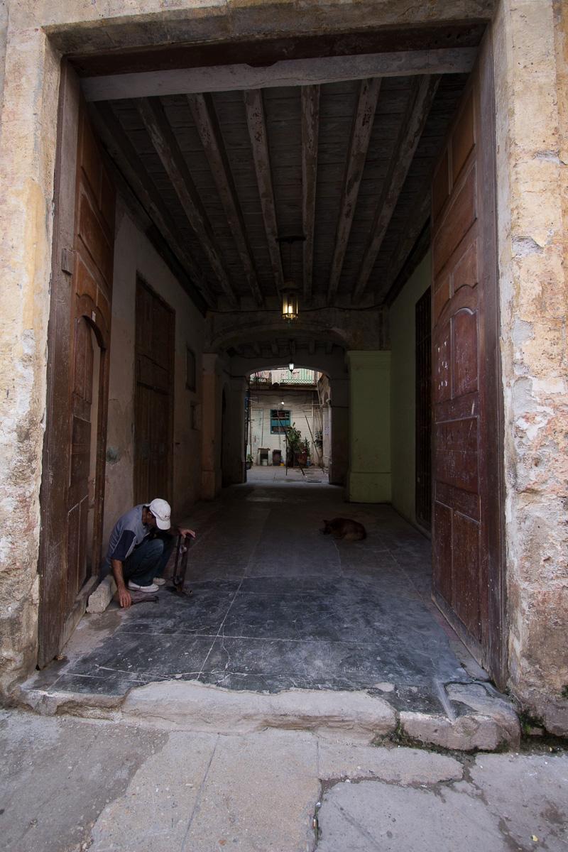 Havana-8008
