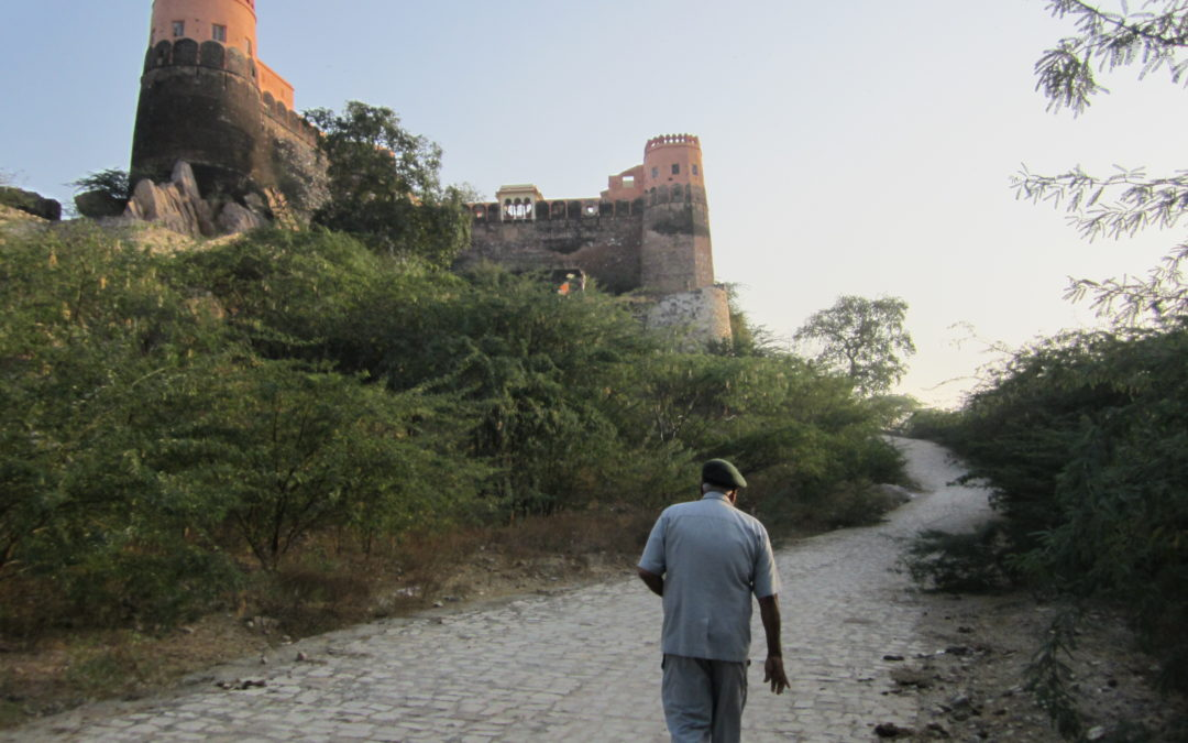 Madhoghar Fort, Bassi