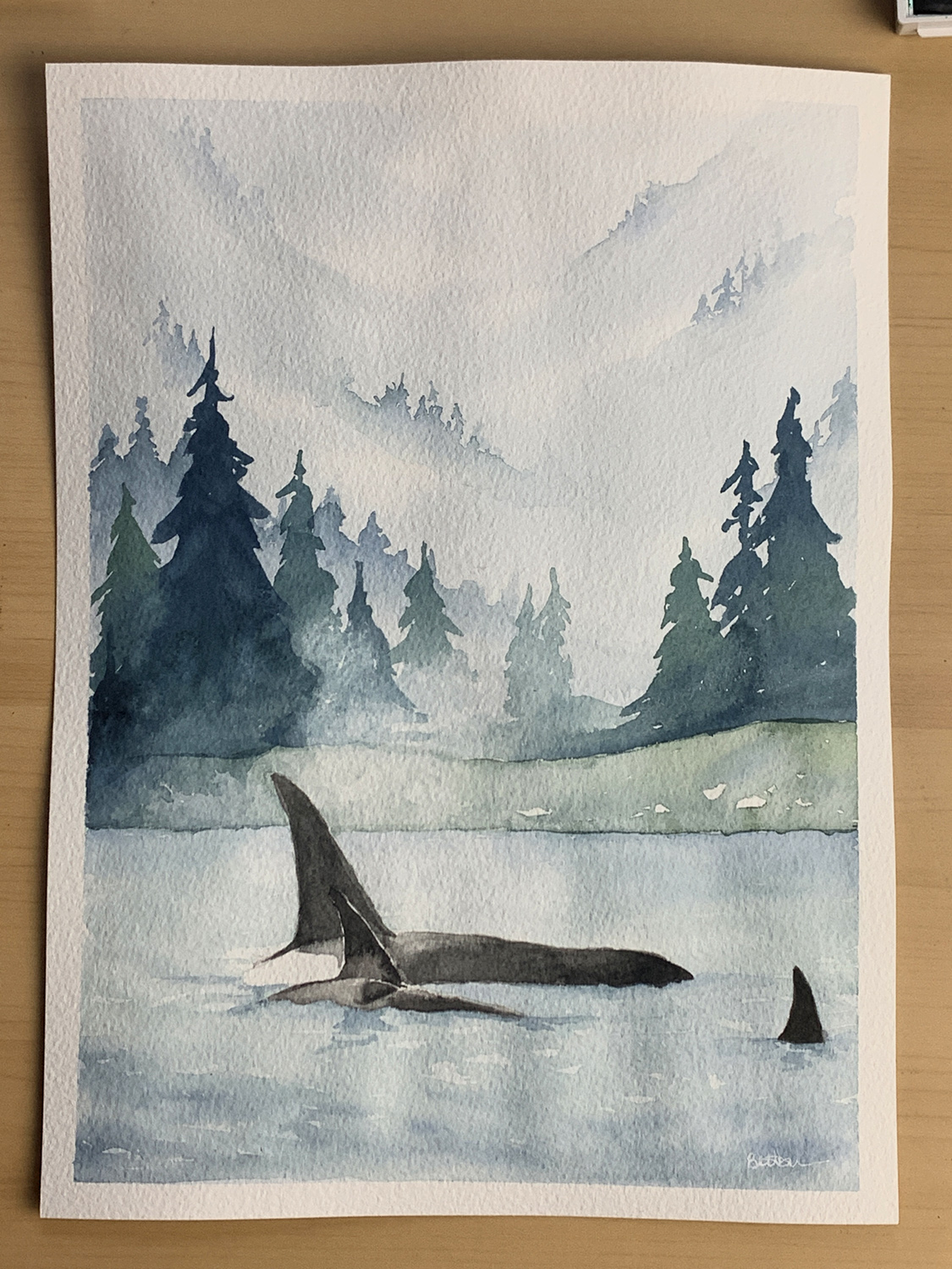 Leaping orca